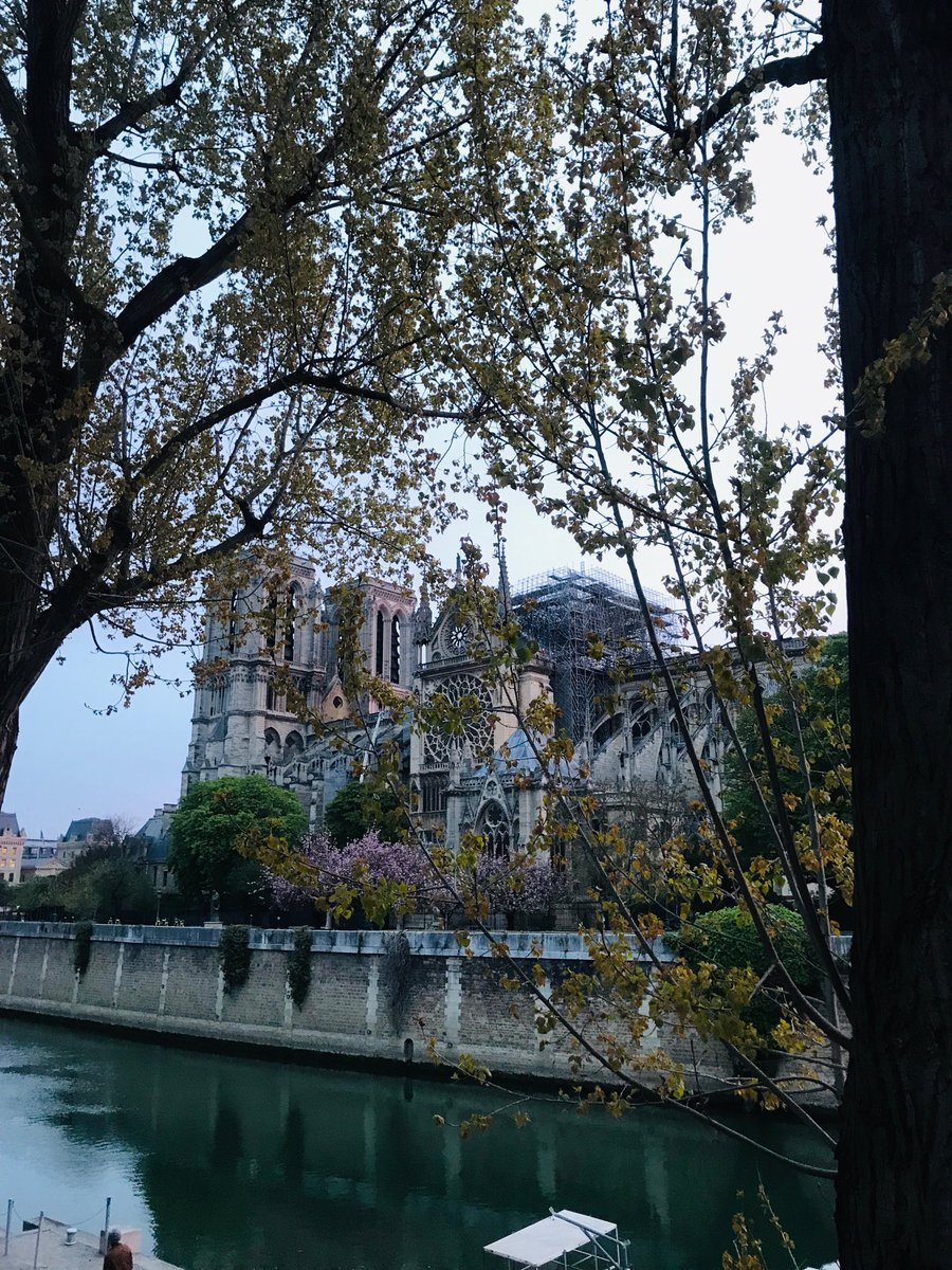 RT @AgnesCPoirier: Look at this. Isn't she still the most beautiful? #NotreDame https://t.co/ouMobB5Axp
