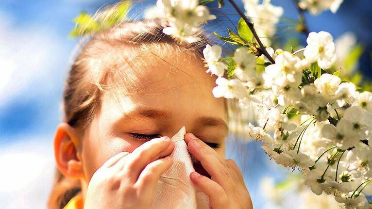 test Twitter Media - Al·lèrgies i erupcions a la pell, afeccions de primavera. https://t.co/kJUweELmYT Vía: @diariARA https://t.co/FA4VK3Vat0