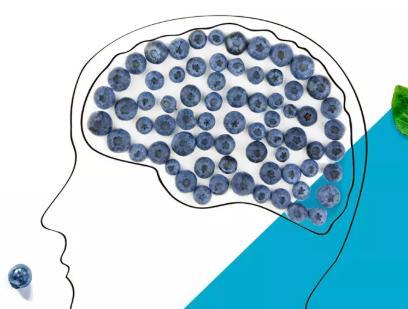 """test Twitter Media - El proper 30 d'abril vine al COF Girona a la xerrada sobre """"Innovació per a la memòria i les habilitats cognitives. Descobreix els nous nootròpics clínicament testats"""" a càrrec de Dietéticos Intersa. Inscriu-te aquí: https://t.co/wbtLQm8Sug @D_Intersa 🧠 https://t.co/MAYbLXk12e"""