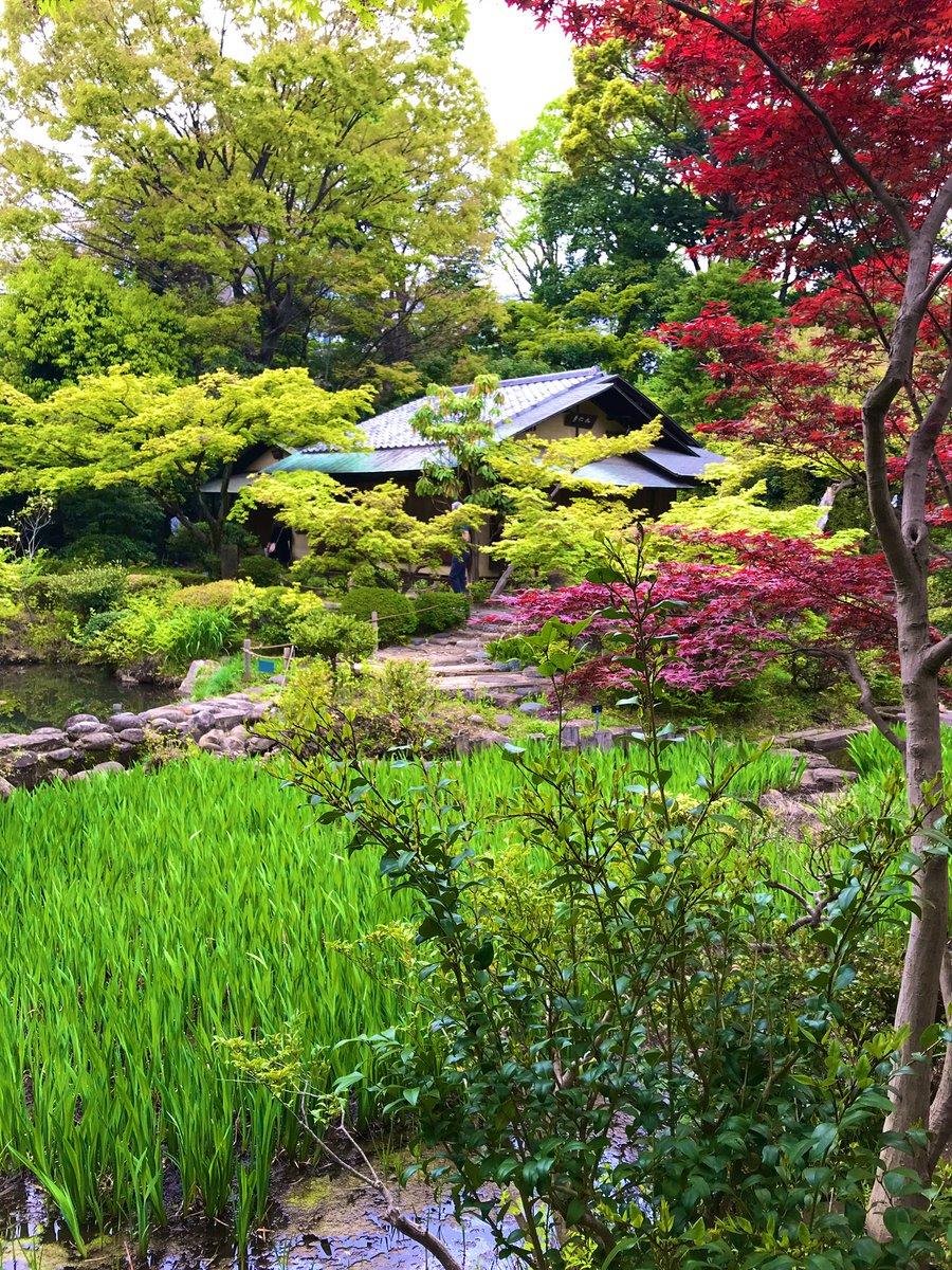 test ツイッターメディア - 久しぶりに根津美術館へ行った。庭の燕子花はまだですが。 https://t.co/CMRC8FLRNY