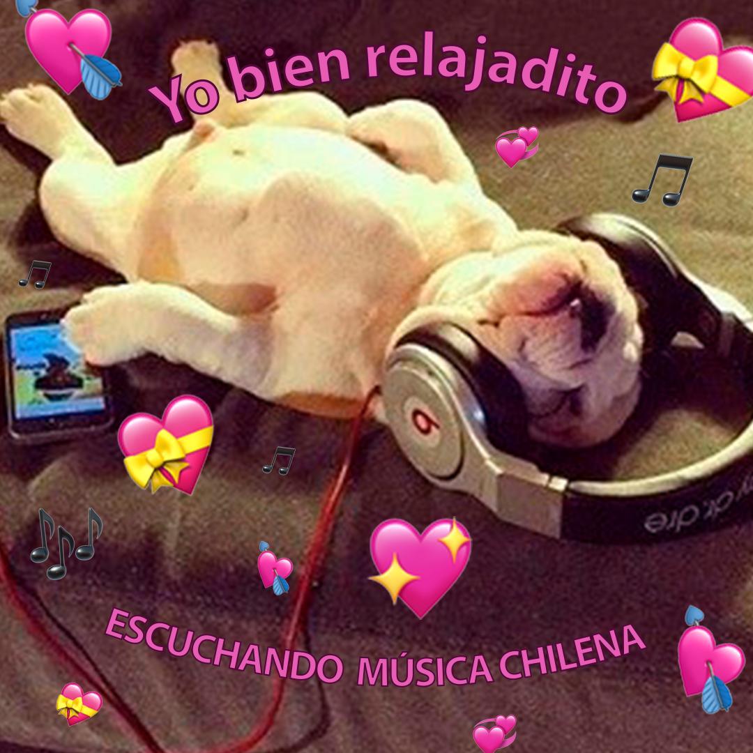 test Twitter Media - ¡Cuando te sale la playlist de #MúsiaChilenaCL -> https://t.co/xe8EH82c5L 🤩! https://t.co/RUrE37PDxd