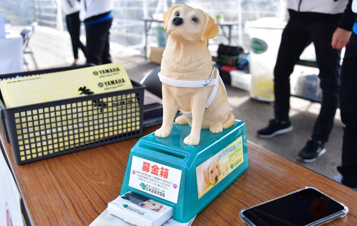 test ツイッターメディア - ムキムキなイッヌではありませんが、弊社のイベント会場などでこちらを見かけた時は🐕日本盲導犬協会(@JGDA_GuideDog )の育成資金を贈る「YAMAHA NICE RIDE募金」にご協力をいただけると嬉しいです!  #ヤマワン https://t.co/ctkD2MivhA