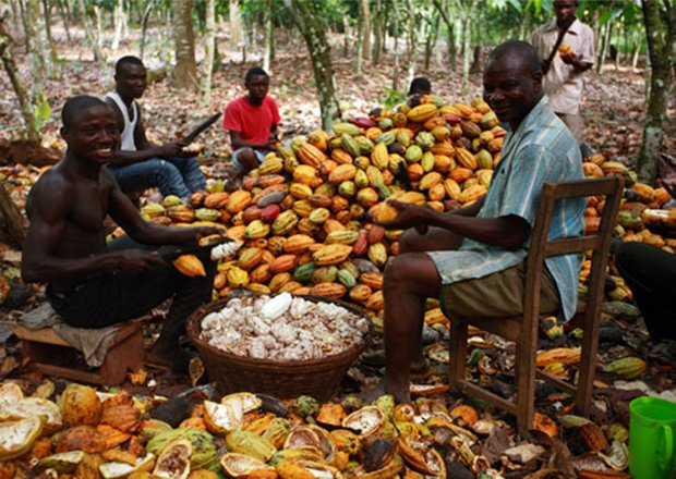 test Twitter Media - Gold Fields Spends GH¢207,000 To Support Cocoa Farmers - https://t.co/4FOlDlyoDo https://t.co/D651G8f11y