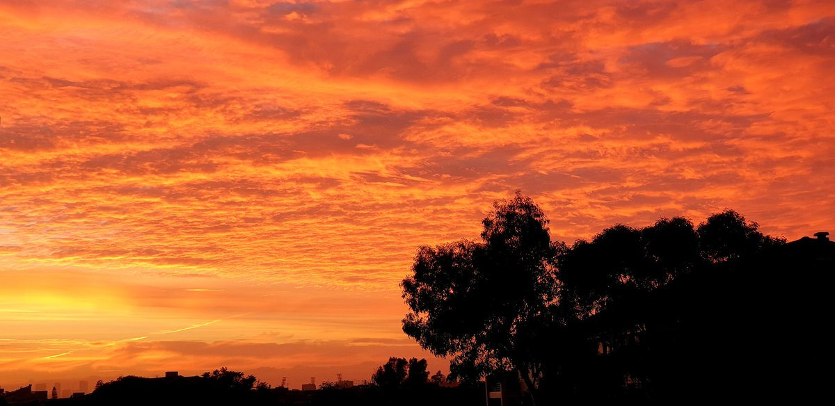 RT @CherScheff: Sunrise skies over Sydney this morning #GoodFriday #April19th #StormHour  #Autumnal https://t.co/NpJIyno8Iv