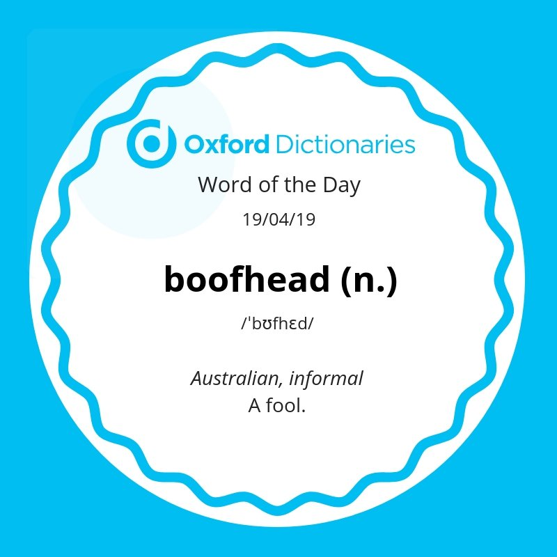 test Twitter Media - Word of the Day: boofhead  https://t.co/OOnePTFYM6 https://t.co/sddfeyn3q0
