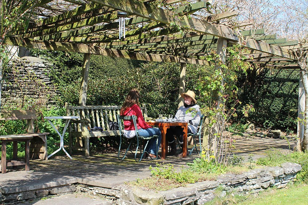 Image for Fancy a cup of afternoon tea and some cake or cookies fresh out of the oven? #yum #BleddfaCentre #cafe #art #gallery #sunnyday #open #RealMidWales #garden https://t.co/3SHCqWSJoh