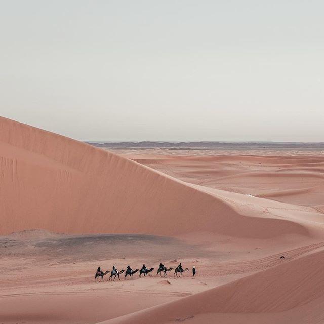 "Fubiz on Instagram: ""Exploring the Sahara Desert 🐫 by @carleyscamera⠀ #fubiz #photography #art #inspiration⠀⠀⠀⠀⠀⠀⠀⠀⠀⠀ Mention @fubiz if you want to be featured…"""