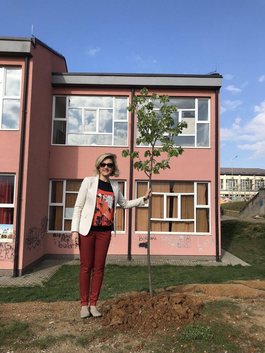 #PlantAtreeChallengeKosova #keepItGreen #GreenKosova https://t.co/wBcRPjRxn1