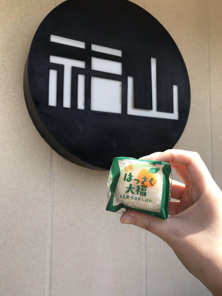 test ツイッターメディア - はっさく大福美味い✨ https://t.co/yDFPBaPnsX