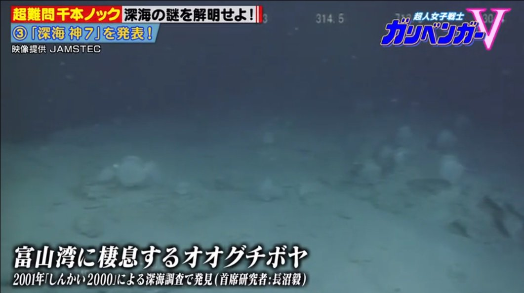test ツイッターメディア - #ガリベンガーV 2001年しんかい2000による深海調査で発見(長沼毅) 長沼教授本人じゃないですか😮 https://t.co/GCedKxhxo4