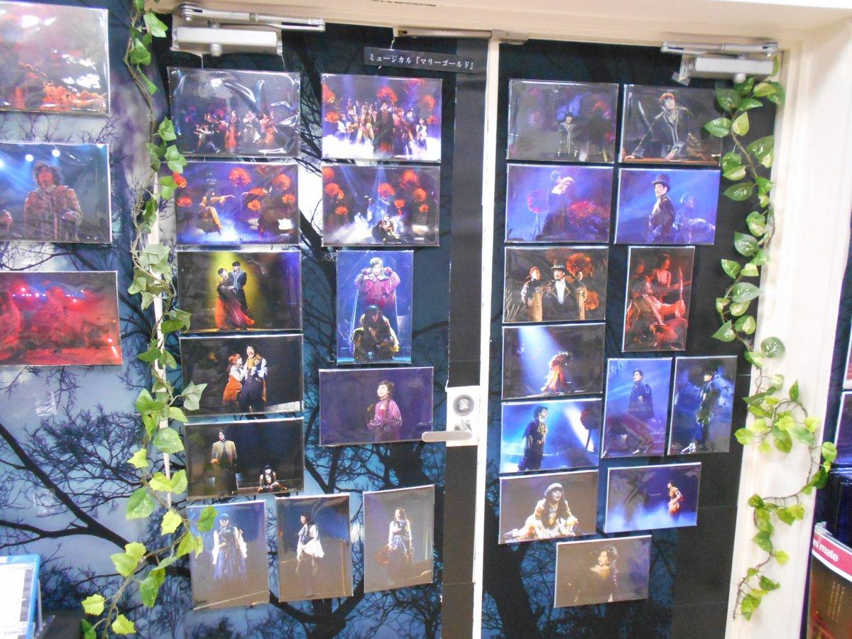 test ツイッターメディア - ✨『ミュージカル「#マリーゴールド」パネル展』開催中✨  大好評につきパネル展ツアー開催延長中❗️ 渋谷店での開催期間は「4月30日」まで😆 Dステ12th『#TRUMP』TRUTH・REVERSEや #SPECTER や #グランギニョル も…‼️壁一面に圧巻の展開となっております✨下北沢から渋谷まで井の頭線ですぐシブ…😉💫 https://t.co/Q6rfz04Su0