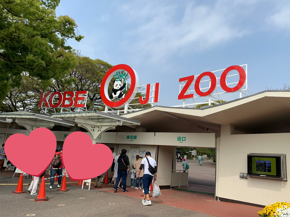test ツイッターメディア - 王子動物園楽しかった🐼✨ https://t.co/jgNmVORNTD