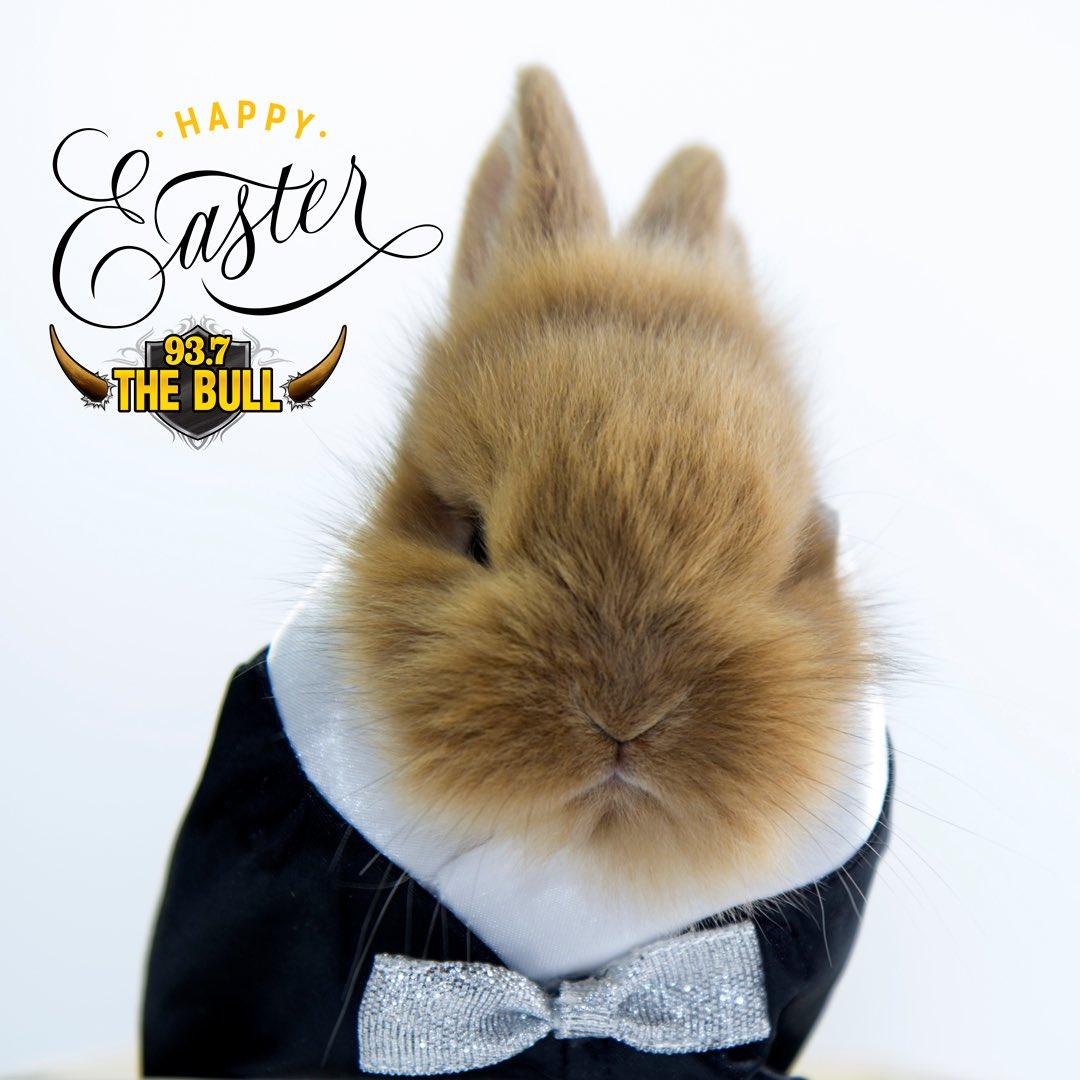 Happy Easter!!!🐇🐣🐰 https://t.co/W2PMuTBix9