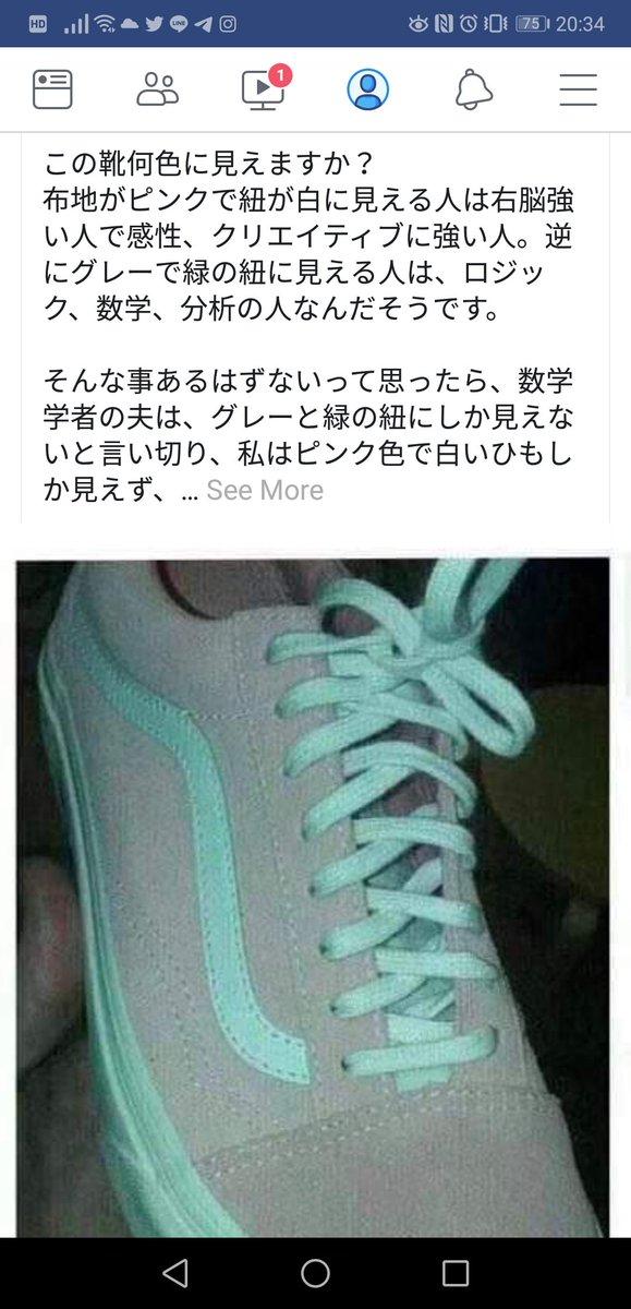 ピンク 白 靴 錯覚