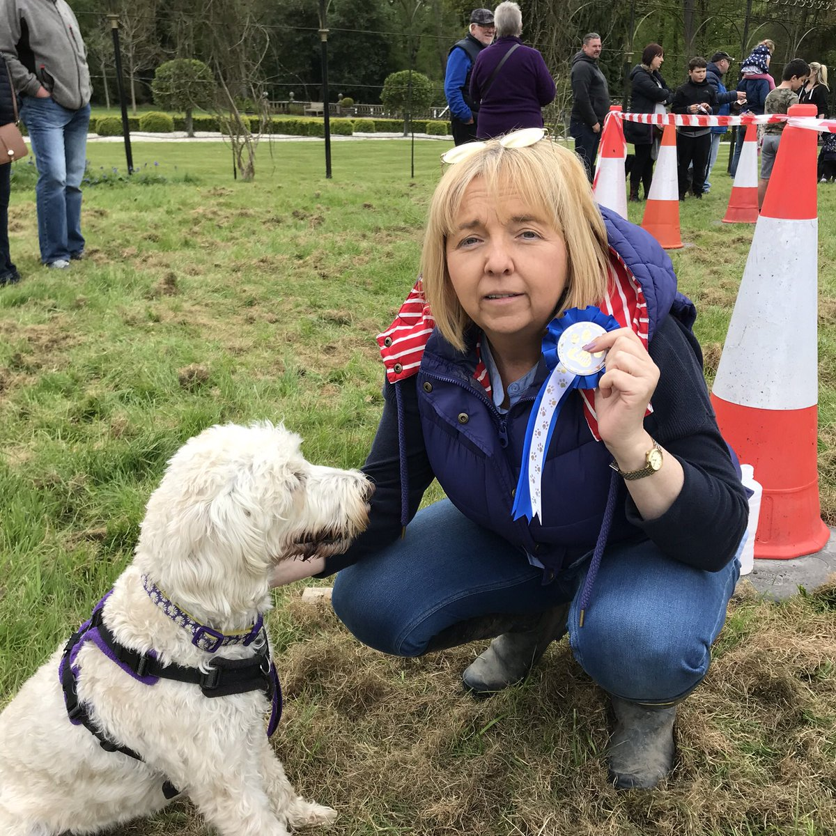 test Twitter Media - What a lovely day at the 'fun dog show' at Hogarths. Lovely atmosphere. Daisy was so good and even won a rosette for 2nd place in the 'tricks' category.🐾🐾🐾 https://t.co/7AsLuoBA1o