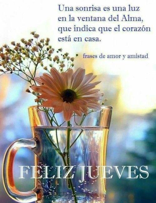 RT @doloresrioja: #BuenJueves #FelizJueves #JuevesdeSesion #Buenastardes https://t.co/MXYO4yKXPT