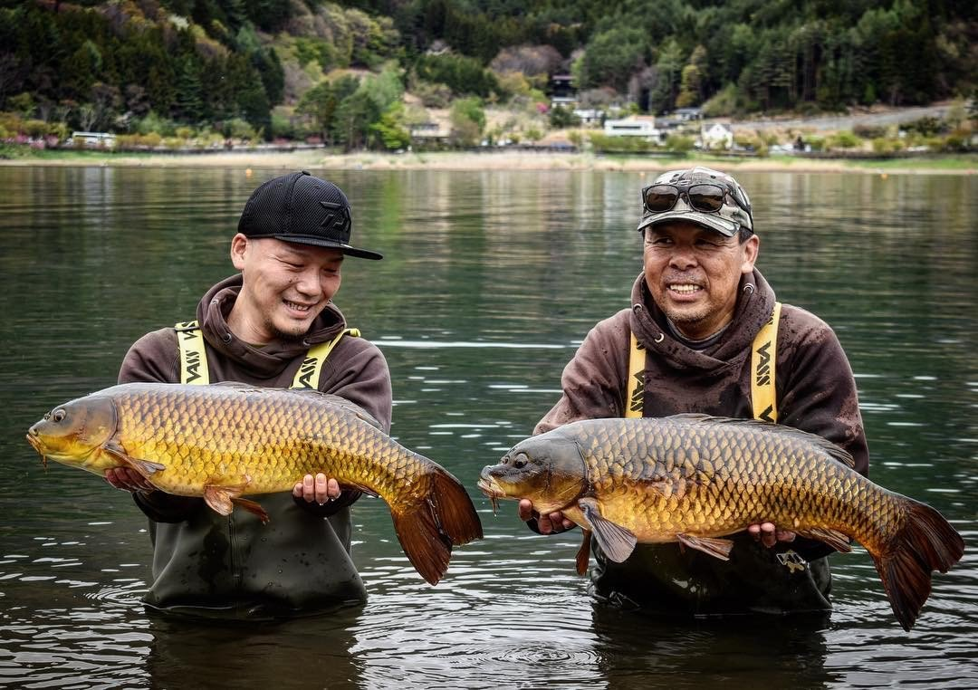 RT @Vasswaders: Double hit for Tohru Sugawara in Japan. #carpfishing #vasswaders #Japan https://t.co