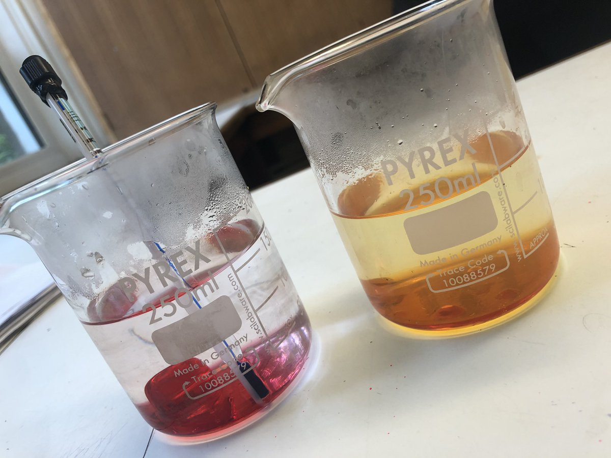 test Twitter Media - How does surface area affect the rate that jelly dissolves? Today our year 9 Biology pupils have been finding out... #jelly #investigate #explore https://t.co/OGn8XN2GgL