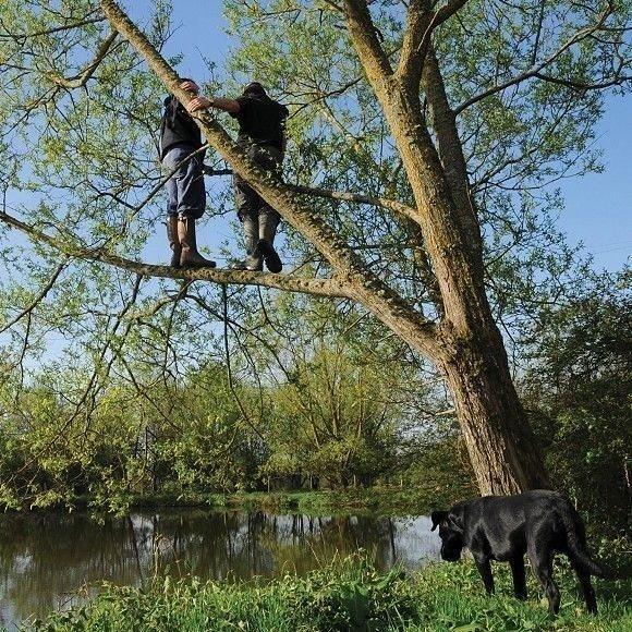 Anyone <b>Else</b> climb trees to spot the fish? #carp #carpfishing #fishing #spot2fish https://t.co