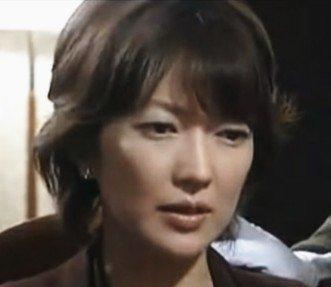 test ツイッターメディア - 日付は確認します 煮付けは食べてます  今週も元気です だから突然ですが  女優の「羽田美智子」さんです  いうまでもなく 大活躍の女優さんです  キャンペーンガールに 選ばれたのがデビューのきっかけで  その後下積みを経て ヒット作に出演が続いてます  画像は「相棒」での 女優  小峰夕月役です https://t.co/MQuuo8xmRK