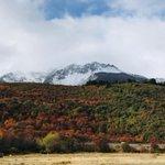 Mira más imágenes de nuestra #patagonia  en https://t.co/QqeCrrwxtn https://t.co/MKrn6S58OB