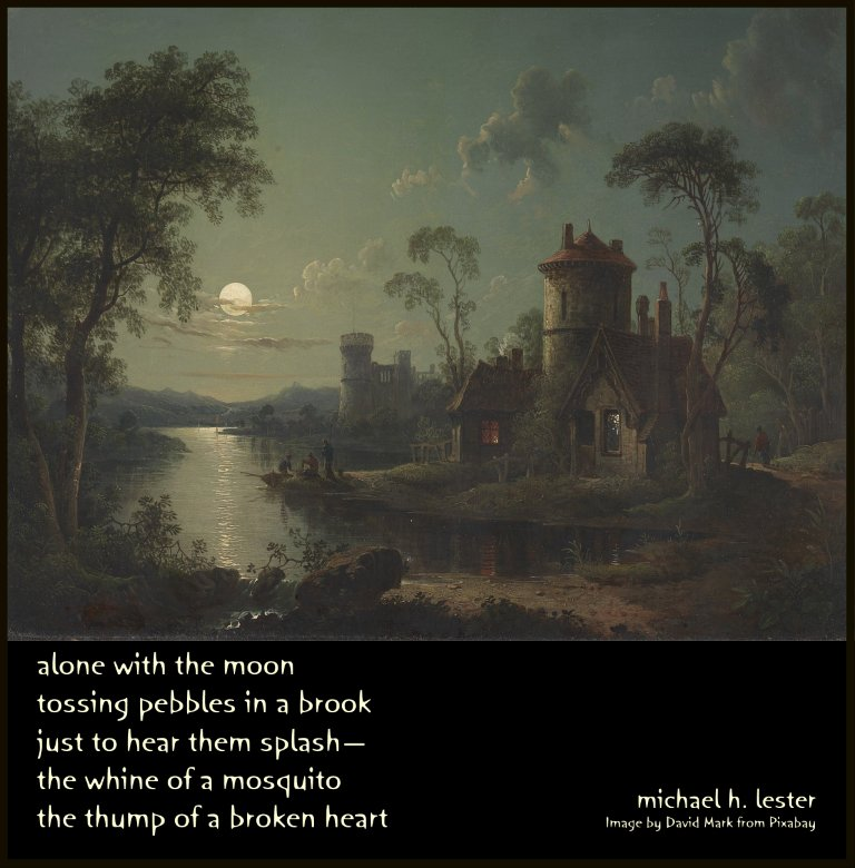 #tanka #kyoka #haiku #senryu #haiga #micropoetry #poetry  alone with the moon tossing pebbles in a brook just to hear them splash— the whine of a mosquito the thump of a broken heart https://t.co/6i4T4FAaXu