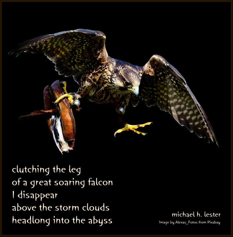 #tanka #kyoka #haiku #senryu #haiga #micropoetry #poetry  clutching the leg of a great soaring falcon I disappear above the storm clouds headlong into the abyss https://t.co/BTS9ByPBz7