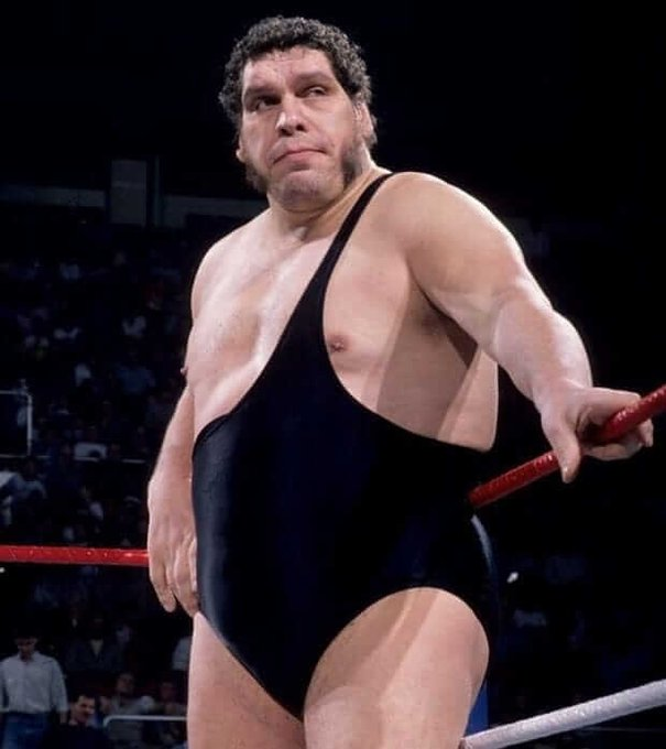 Happy Birthday to Andre The Giant. Rest in Peace Boss.