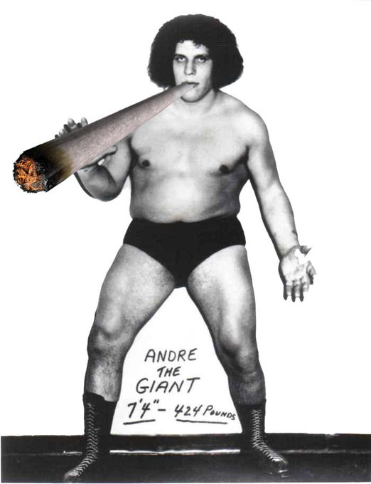 Born on this Day: Andre the Giant ~ Happy Birthday