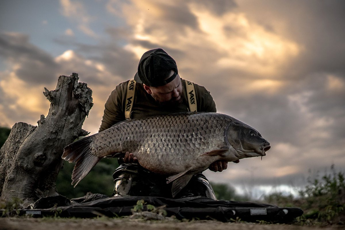 Another b<b>Eau</b>ty for Luca. #carpfishing #fishing #vasswaders https://t.co/RVloRzcz4Y