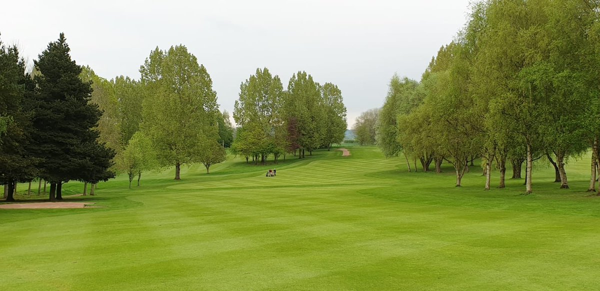 test Twitter Media - Good luck to all the ladies playing in the S.L.C.G.A County Championships here at @IngestreParkGC .⛳️ Its an honour to host the event 🏆 #ladiesgolf #MGSocial  @MidlandsGolfer @GirlsGolfRocks1 @staffsgolf @EGWomensGolf @staffsgolfclubs @IPGCourseupdate https://t.co/0Kh3BkpCRj