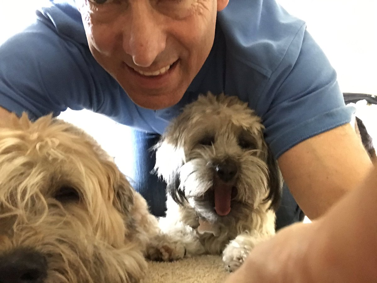 BobSchwartz: Saying goodby to the pups. See you all soon at The Greatest Commerce Show on the Planet 😉 #RoadtoImagine #Magento https://t.co/NczxAGOHbk