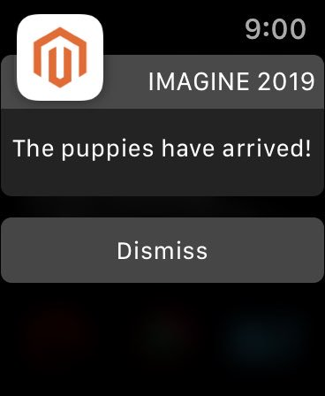 benmarks: THE BEST CONFERENCE PUSH NOTIFICATION IN HISTORY #MagentoImagine https://t.co/SIrRqfh28P