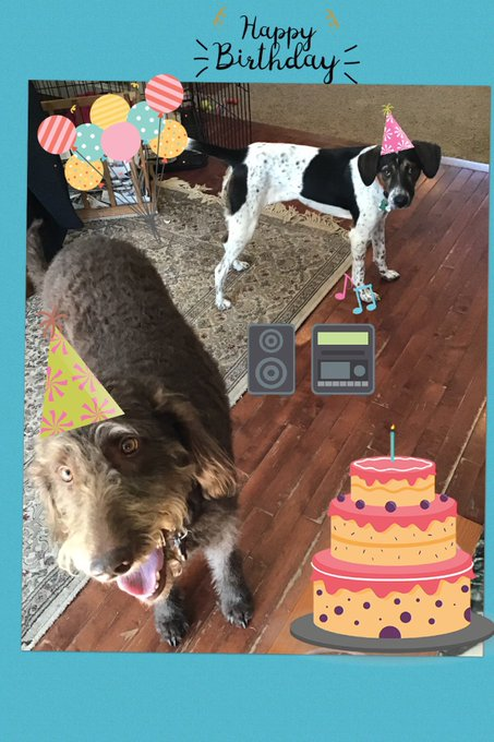 Happy Birthday from Ruby and Gertie