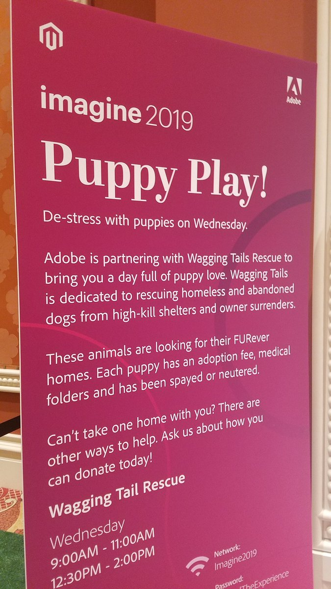 MissDestructo: I had to see the puppies before leaving #MagentoImagine. They were doing what I want to do rn. https://t.co/HHwBrsb8wK