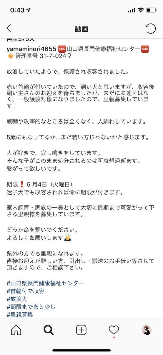 松村北斗 彼女 ツイッター