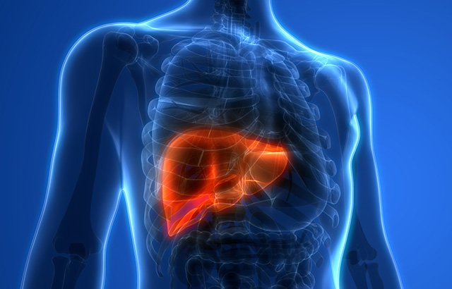 test Twitter Media - #Diabetes patients at higher risk of deadly #liver disease, finds study of 18 million people by @QMUL @blizard_inst @WillAlazawi @UofGlasgow @UofGMVLS @BioMedCentral @BMCMedicine @IMI_JU @The_MRC https://t.co/K3igLFaFlA https://t.co/winftR3LVM