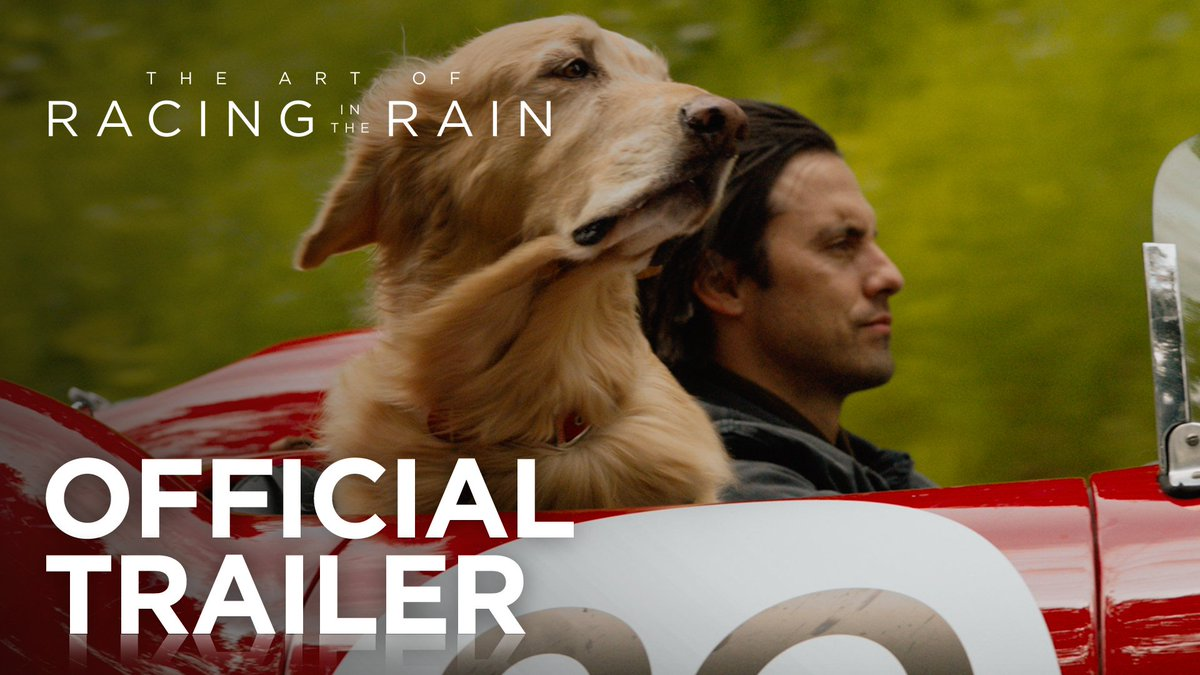.@MiloVentimiglia and @AmandaSeyfried learn the rules of the road from an unlikely copilot in The Art of Racing in the Rain. In theaters, August 9th. #ArtOfRacing