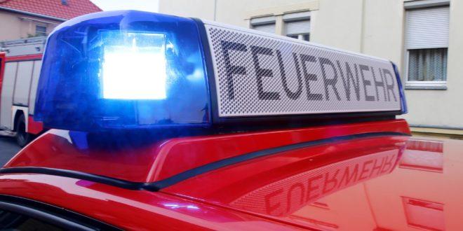 test Twitter Media - Mehrere kleinere Einsätze für die Nordhorner Feuerwehr https://t.co/kE5TB4ZKY4 https://t.co/s8BSDSPJyU