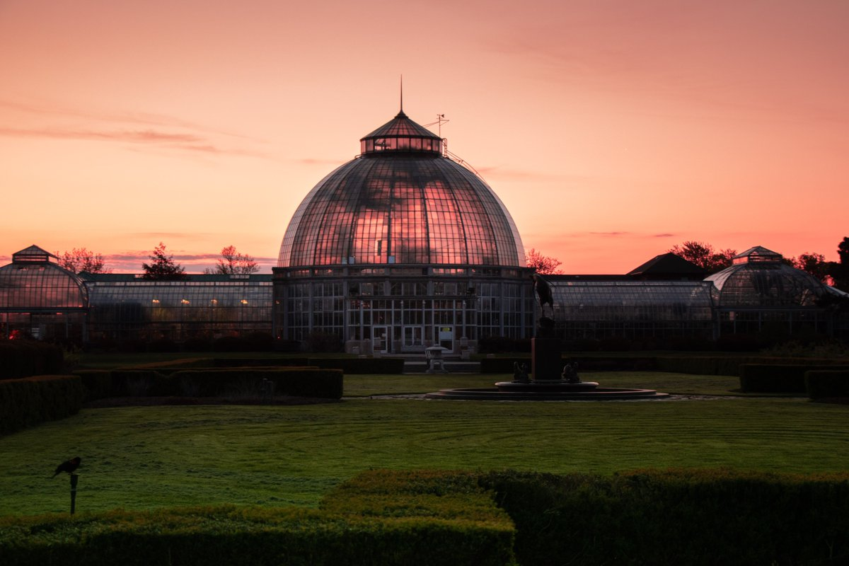 test Twitter Media - Visit the revitalized Belle Isle Anna Scripps Whitcomb Conservatory and enjoy all it has to offer! Click the link to learn about the renovation that preserved the historic landmark: https://t.co/XRi2kRNBF1 https://t.co/ipFo4fAaY9