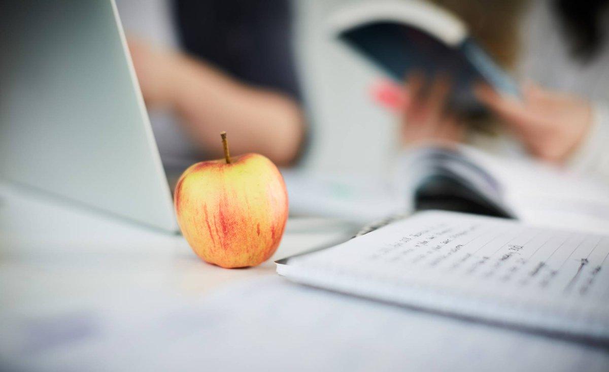 test Twitter Media - Cuidado con lo que comes en época de exámenes: cuanto más sana sea tu alimentación, mejores serán tus notas. https://t.co/63CEKW0Dwe Vía: @el_pais https://t.co/3XhYrNbZb4