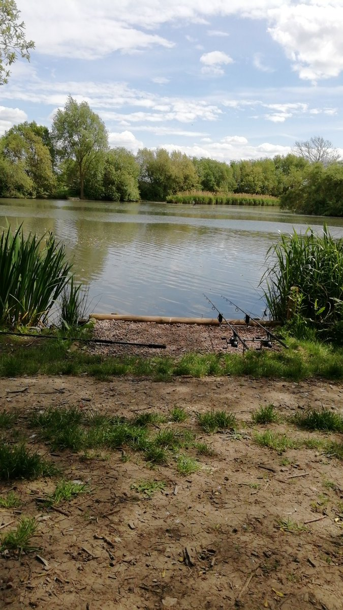 What a glorious afternoon here's hoping 🐟🐟 #carpfishing #CARPology #fishing https://t.co/9m3fq