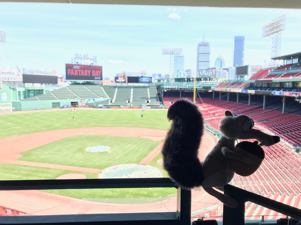 test Twitter Media - #INTA2019 #FollowtheAcorn #Boston #RedSoxStadium https://t.co/FpLeKhYKIO