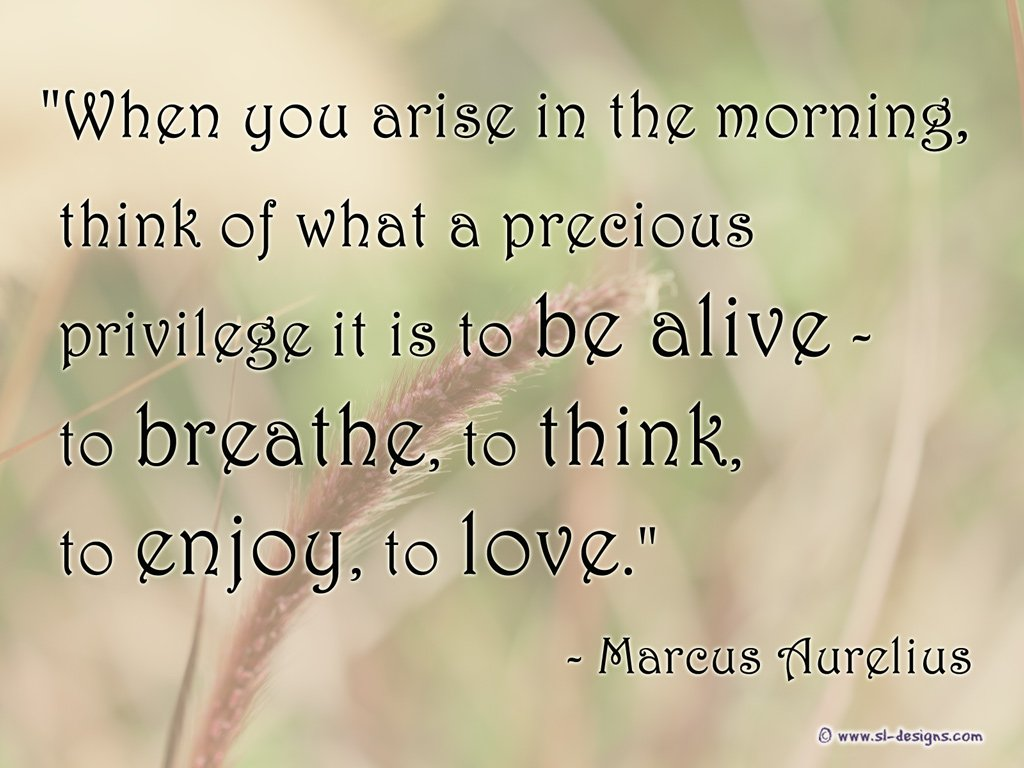 "test Twitter Media - ""When you arise in the morning, think of what a precious privilege it is to be alive - to breathe, to think, to enjoy, to love."" Marcus Aurelius  . . Repost from: https://t.co/dopAuSYQVp . #createcultivate #marcusaurelius #quotes #yourhometeamcare   #lifequotes  #sldesigns https://t.co/nu3vdyUC3Y"