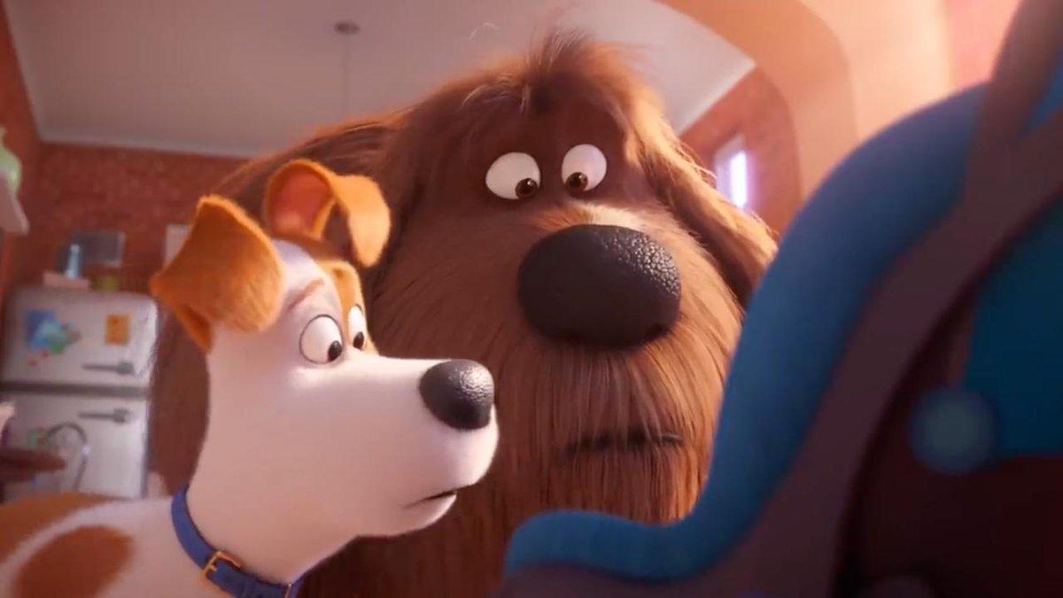 Film review: 'The Secret Life of Pets 2'