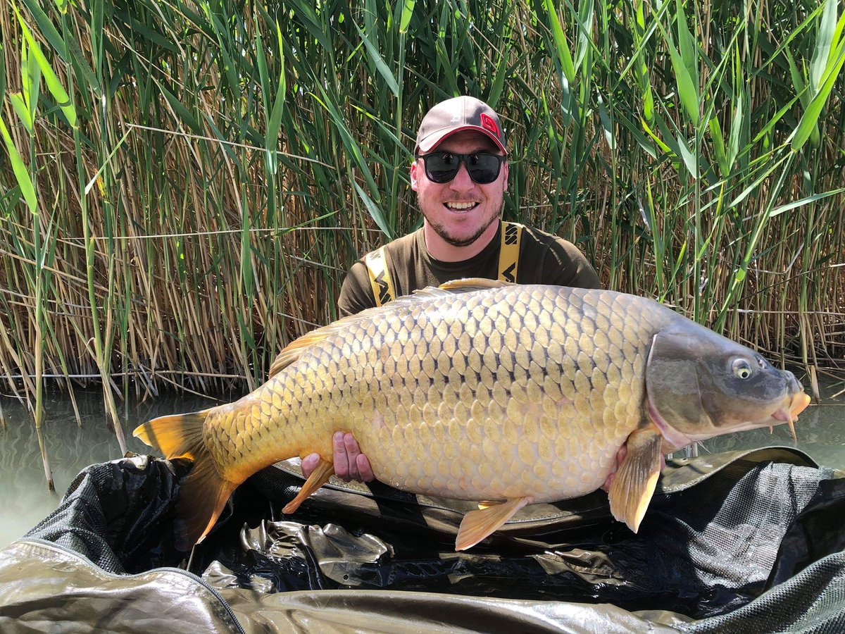 Lake Balaton and 18.10kg for Varga. #carpfishing #<b>Bigcarp</b> #vasswaders https://t.co/ImXHA7nM76