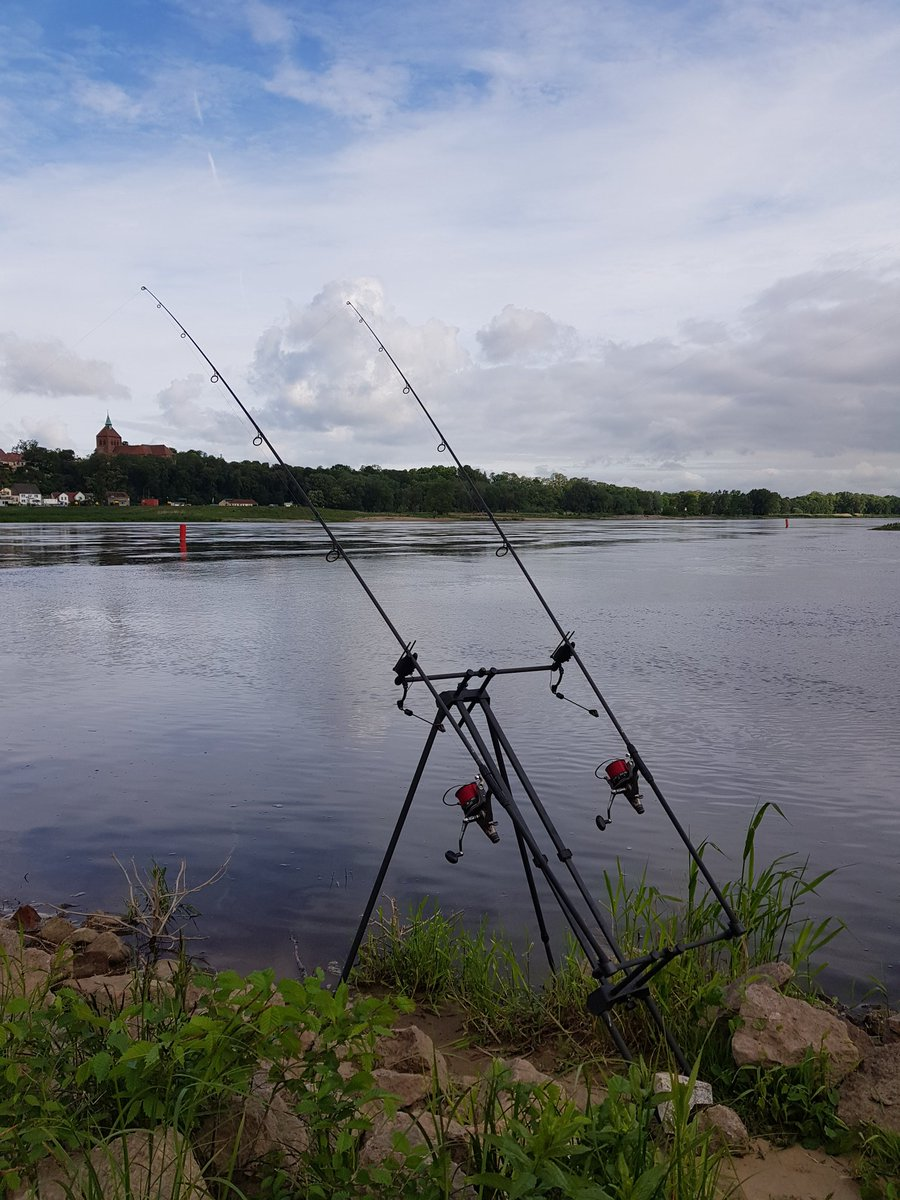#elbkarpfen #fishing #carpfishing #<b>Karpfenangeln</b> https://t.co/UKZ7YmBbwL