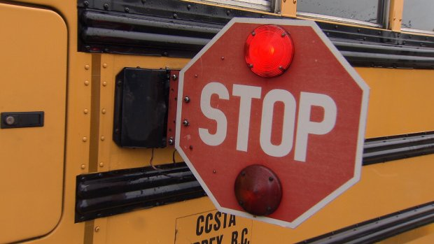 'Too close': N.B. school bus driver rails against distracted driving after near-miss