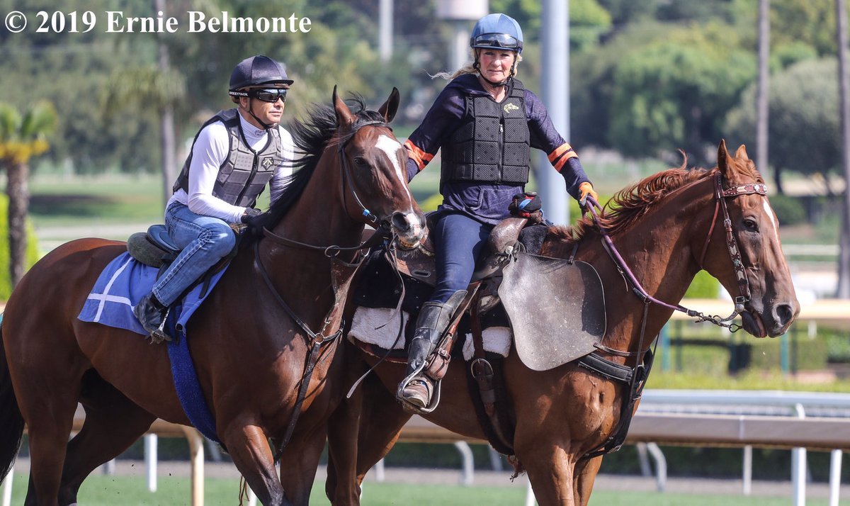RT @ErnieBPhoto93: Paradise Woods working this morning under Hall of Fame jockey Mike Smith aboard. https://t.co/TjWpZC1n10