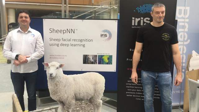 test Twitter Media - Our #deeplearning #sheep #neuralnetwork known as #sheepNN was a hit during its demonstration using #edgedevices. Who knew #facialrecognition for sheep would be of so much interest to so many in #Dunedin who attended the #texpo for #techweek19. #agritech has no limits! https://t.co/LepgdYuBAy